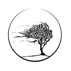 arbre vent cercle
