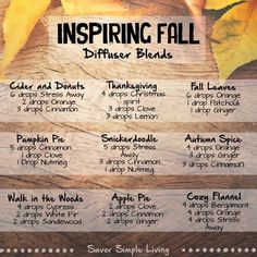 Anointed By Abba shares the best diffuser recipes for Fall plus a real pumpkin spice latte recipe AND bonus Christmas diffuser blends using Young Living Essential Oils. Fall Essential Oils, Essential Oil Diffuser Blends, Essential Oil Uses, Young Living Essential Oils, Antibacterial Essential Oils, Diffuser Recipes, Young Living Oils, The Fresh, Doterra Oils