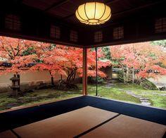 Japanese Garden, Adachi museum of Art, Yasugi, Shimane