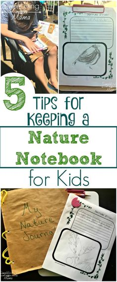 5 Tips for Keeping a Nature Notebook for Kids 5 Tips for Keeping a Nature Journal for Kids Outdoor Education, Outdoor Learning, Kids Learning, Outdoor Play, Learning Resources, Nature Activities, Science Activities, Activities For Kids, Science Ideas