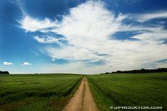 Alberta Prairie 138 by JProcktorPhotography on Etsy True North, Country Roads, Canada, Etsy