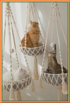 (paid link) Check out our cat hammock selection for the very best in unique or custom, handmade pieces from our pet furniture shops. #cathammock