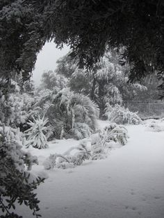 when it does snow on Crete, it really transforms the landscape into something surreal . Dream Land, Crete, Surrealism, Places Ive Been, Beautiful Places, Paradise, Snow, Island, Spaces