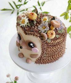 Pretty Cakes, Cute Cakes, Hedgehog Cake, Cute Birthday Cakes, Animal Birthday Cakes, Creative Birthday Cakes, Fall Cakes, Novelty Cakes, Occasion Cakes