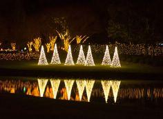 magic christmas in lights mobile al www