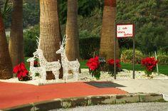 Christmas at Zahara de Istán