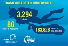 New Report Acknowledges Dive Against Debris Influence in Tackling the Marine Debris Crisis | Project AWARE