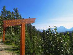 Jasper Banff Ice-Highway Banff, Jasper, Arch, Outdoor Structures, Garden, Garten, Arches, Lawn And Garden, Outdoor