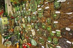 Gallery of Shop Pictures at the Spirit of the Green Man Studio. - Spirit of the Green Man