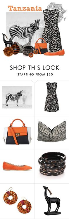 """Orange Tanzania"" by caribea ❤ liked on Polyvore featuring National Geographic Home, Almost Famous, Salvatore Ferragamo, Chloé, Nest, NOVICA, ELK Lighting, orange, zebra and africa"