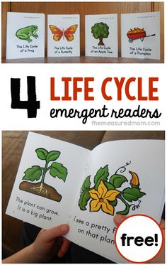 These FREE emergent readers are perfect to use with your life cycle unit! They'll have your students reading about the life cycle of a butterfly, frog, pumpkin, and apple tree.