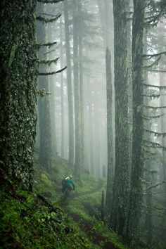 Some people don't understand mountain biking, or why I love it.