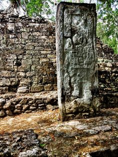 Stela 29 showing Ruler at the Mayan ruins of Calakmul, Campeche, Mexico. Calakmul is located in the 7,231.85 square km Calakmul Biosphere Reserve, which was established in 1989. Calakmul was made a UNESCO World Heritage Site in 2002.
