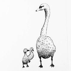 A swan for my daily drawing 156   #dailydrawing #drawing #ink #inkdrawing #bird #birdstagram #ilovebirds #birdlover http://ift.tt/2mbE3Al A swan for my daily drawing 156  dailydrawing drawing ink inkdrawing tumblr bird birdstagram