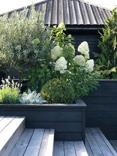 #Garten&Terrasse Back Gardens, Small Gardens, Outdoor Gardens, Ideas Estanque, Small Garden Design, Garden Spaces, Dream Garden, Garden Planning, Garden Projects