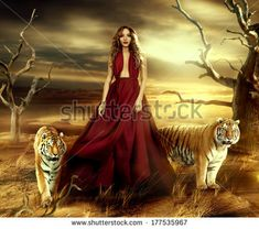 fashionable young attractive and sensuality woman in the desert in long red dress with tigers near her