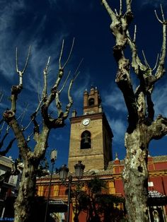 San Lorenzo  Sevilla