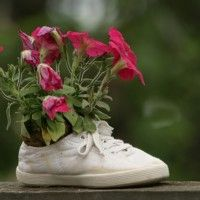 Recycle old shoes