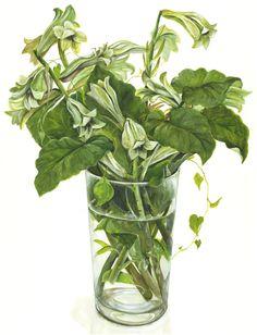 Margaret and Italian parsley