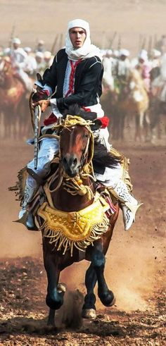 Horse Costumes, Morocco Travel, Arabian Nights, North Africa, World Cultures, Islamic Art, Beautiful Horses, People Around The World, Continents