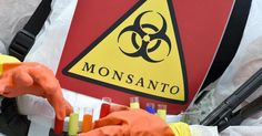 Bayer said the number of U. lawsuits brought against newly acquired Monsanto has risen to about from previously after Monsanto was ordered to pay damages for not warning of alleged cancer risks of glyphosate-based weedkillers. Animal Protection, Slow Food, Now And Forever, In Law Suite, Our Planet, Cancer, Bring It On, Conscience, Ainsi
