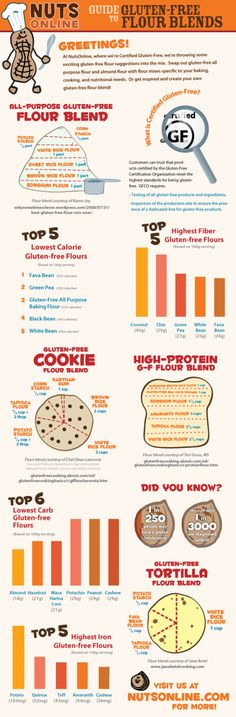 Infographic Sundays - The Guide to Gluten Free Flour Blends Edition - Delicious Obsessions