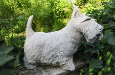 Large concrete Scottish Terrier garden statue – Spring Hill Studio