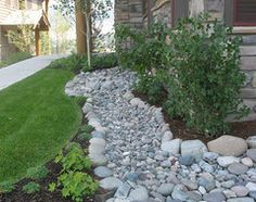 dry creek bed - Google Search