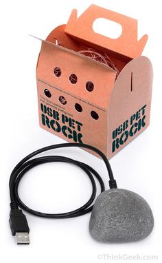 USB pet rock - and here is that pet rock!