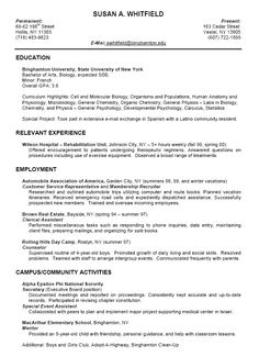Skill Based Resume Examples Functional Skills Based Resume Template  Sample Resume  Resume