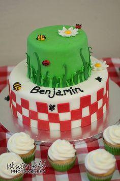 Picnic bug theme tiered birthday cake