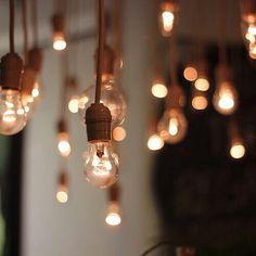 aesthetic brown lights feed rachel