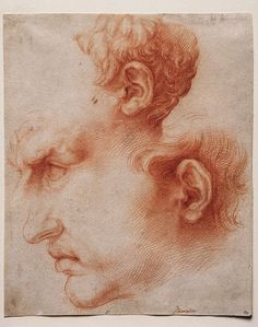 Jusepe de Ribera (1591–1652) Studies of a Head in Profile, c. 1622 Chalk 9 13/16 x 8 1/8 inches Princeton University Art Museum Museum purchase, Laura P. Hall Memorial Fund and Fowler McCormick, Class of 1921, Fund (2002-97)