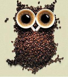 coffee owl :D