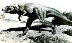 Parker-Megalosaurus-1.jpg (1000×604)