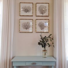 Chic cottage foyer features a collection of black sea fans framed in gold bamboo picture frames placed above a blue console table flanked by windows dressed in ivory drapery panels.