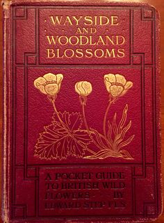 Wayside and Woodland Blossoms - A Pocket Guide to British Wild Flowers, by Edward Step, Frederick Warne & Co., London, 1905