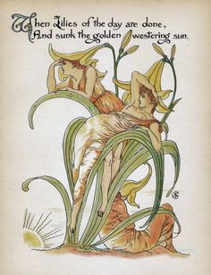 When lilies of the day are done and sunk the golden westering sun