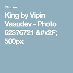 King by Vipin Vasudev - Photo 62376721 / 500px