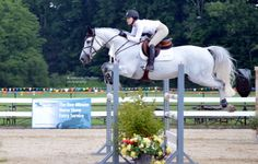 I can't live without writing, reading, studying my Bible, animals (animal rescue & fostering), dancing and singing. Show Jumping Horses, Show Horses, Animals And Pets, Cute Animals, Horse Pictures, Horse Photos, English Riding, Horse Girl, Equine Photography