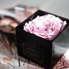 12 X Handgemachte Konservierte Blumen Getrockneten Rose Flower Head Jahrestag