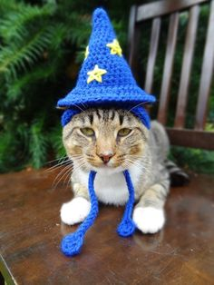Geektastic Crocheted Hats for Cats
