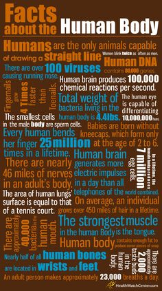 facts about the human body.....