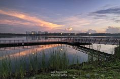 Sunrise @ Bedok Reservoir Park #2 - First time take this angle at Singapore Bedok Reservoir park,like the the cross line sunlight with wooden walk way and beautiful blue sky and clouds ,add the 0.3,0.9 ND soft and CPU filter ,enhance the blue sky and reflection