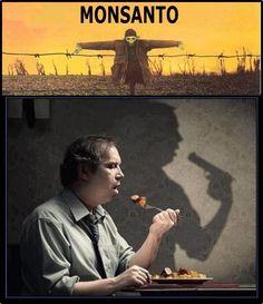 Monsanto... !
