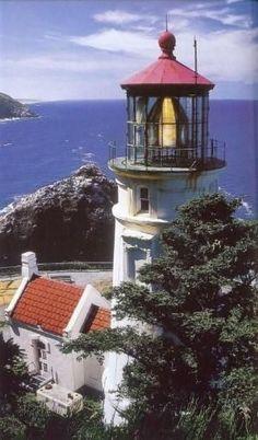 Heceta Head Lighthouse Oregon USA by margo
