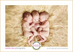 san diego newborn triplets photographers twins in studio at home photography session maternity photo for maternity and newborns poway la jolla del mar