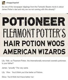 Fantastic Beasts and Where to Find Them, Fleamont Potter, James Potter, Lily Evans, Sirius Black Harry Potter Marauders, Harry Potter Jokes, Harry Potter Fandom, Harry Potter Universal, Harry Potter World, The Marauders, Hogwarts, Slytherin, Severus Rogue