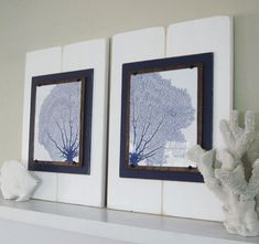 I like the siamese relationship between these two prints. The way they are nestled in un-framelike frames is pretty clever. From a distance,bit makes me wonder: real sea fans or prints of a sea fan?