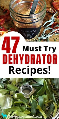 Dehydrated Vegetables, Dehydrated Food, Veggies, Homestead Survival, Survival Prepping, Survival Skills, Survival Shelter, Survival Gear List, Doomsday Prepping